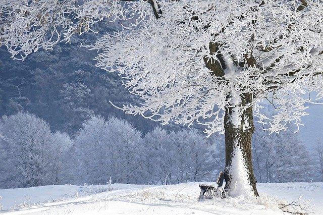 Wintervergnügen 2.0 – 22.02.2020 um 19 Uhr