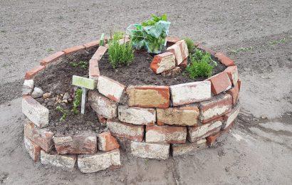 SoDE: Gemeinschaftsgarten – Zaunbau am 15.06.2020 ab 18.30 Uhr